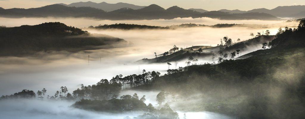 Des montagnes avec du brouillard au Vietnam